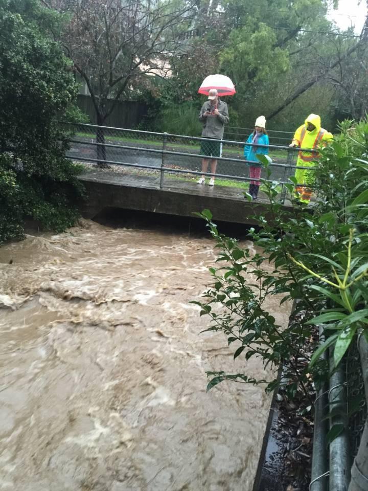 Creek Gauge Installed on Sleepy Hollow Creek