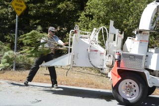 Sleepy Hollow Chipper Day: August 24, 2014